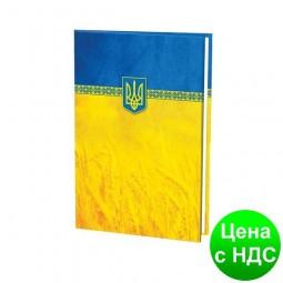 Папка для подписи полноцветная, желто-блакитна E30901-05