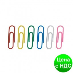Скрепки цветные 28мм, 100 шт., круглые BM.5015