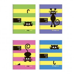 Блокнот для заметок «Crazy Cat», бок. пружина, В5, 60 л., офсет, клетка, мел. обл.